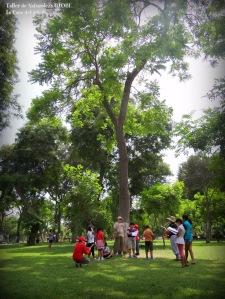 Parque Castilla