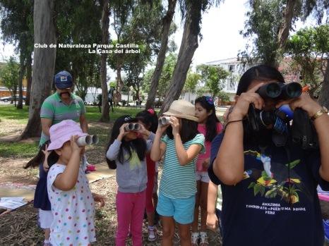 Taller Aves, Plantas y Clima del Parque Castilla